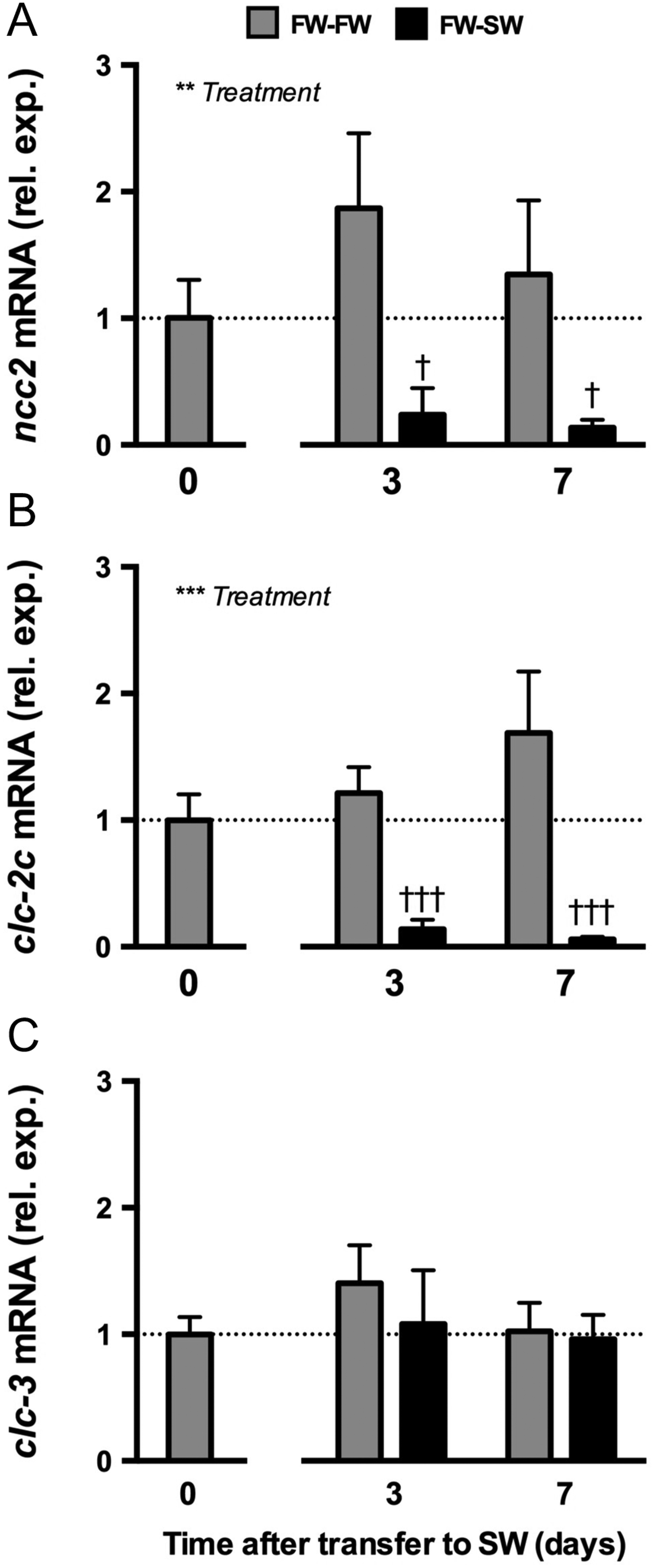 clc-2c is regulated by salinity, prolactin and extracellular