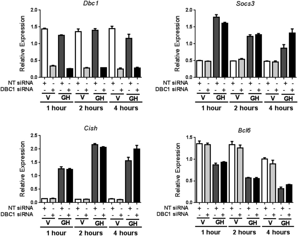 Loss of DBC1 (CCAR2) affects TNFα-induced lipolysis and